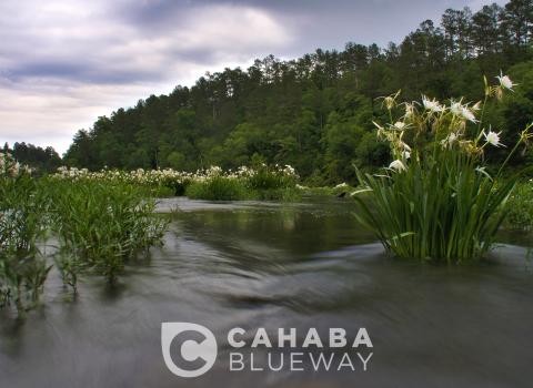 Cahaba Blueway